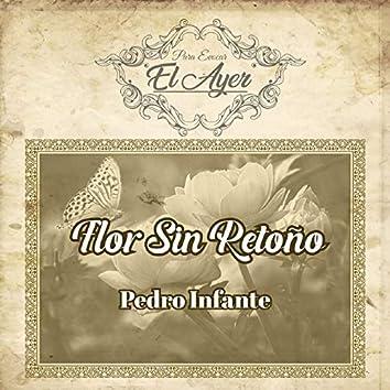 Para Evocar el Ayer / Flor Sin Retoño