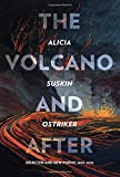 The Volcano and After: Selected and New Poems 2002-2019 (Pitt Poetry Series)