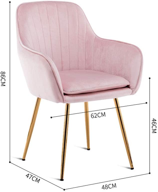 XXT-Chaise de Salle à Manger Chaise de Maquillage Minimaliste Moderne Chaise de thé et de café Chaise de Chambre à Coucher Durable (Color : H) H