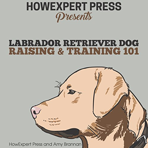 Labrador Retriever Dog Raising & Training 101 audiobook cover art