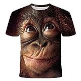 HYTR 3D Camisetas De Orangután 3D Hombres Y Mujeres Moda Animal Print Funny Monkey Camiseta De Manga Corta De Verano Top Camiseta Hombre S-4Xl XL