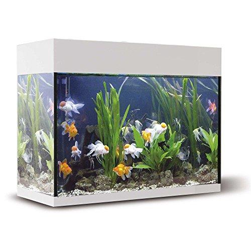 ICA KXB45B Kit Aqualux con Filtro Interior, Crema