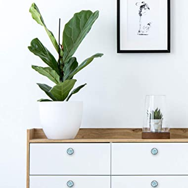 Teams of Sharks Glass 30mm Cabinet Knobs,4 Pack Drawer Door Pulls for Kitchen Bathroom Home Furniture Living Room
