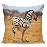 FAMILYDECOR Throw Pillow Covers Zebra on The Grasslands of South Africa Decorative Square Pillow Cases for Living Room Home Decoration 16x16 inches Modern Durable Cushion Case for Bed Chair Office