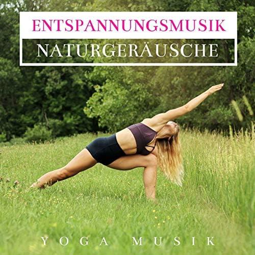Entspannungsmusik Klavier Akademie,Meditationsmusik Knstler