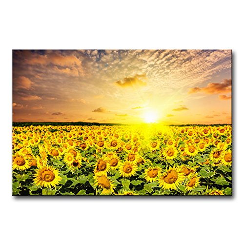 Modern Canvas Painting Wall Art The Picture For Home Decoration Idyllic Scenic - Sunflower Field On Sunset With Dramatic Cloudscape Flower Sunflower Print On Canvas Giclee Artwork For Wall Decor