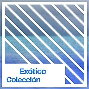 #Exótico Colección