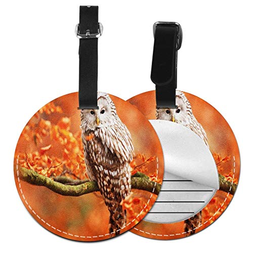 Luggage Tags Autumn Owl 1 Suitcase Luggage Tags Business Card Holder Travel Id Bag Tag