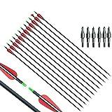E-ROCK 30Inch Archery Carbon Arr...