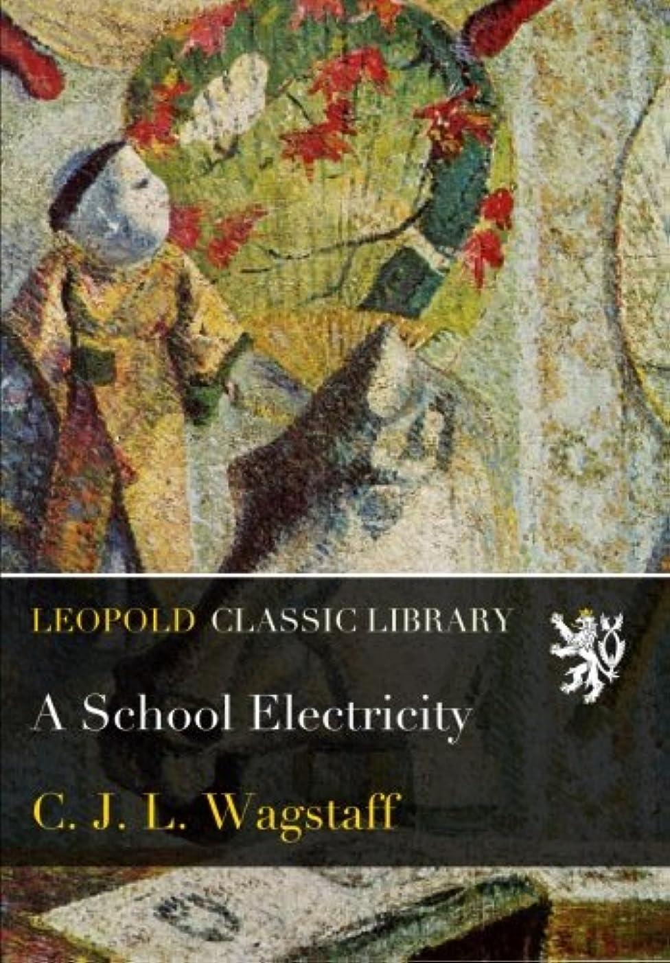 ケージ分類外観A School Electricity