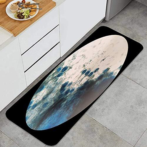 Throwpillow Küchenmatte rutschfeste Türmatte Pilze unter mikroskopischer Betrachtung Aspergillus Waschbare Küchenteppich für Esszimmer, Flur, Wohnzimmer, sinken-120cm x 45cm