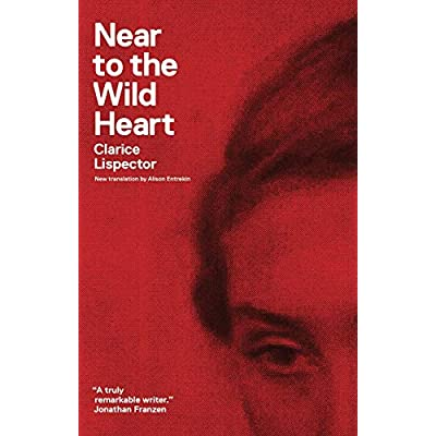 near to the wild heart clarice lispector
