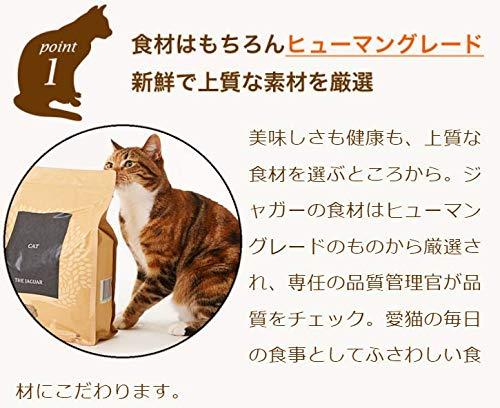 ジャガーキャットフード(1.5kg)動物性タンパク80%以上プレミアムグレインフリー香料着色料不使用チキン鴨サーモンマスたっぷり