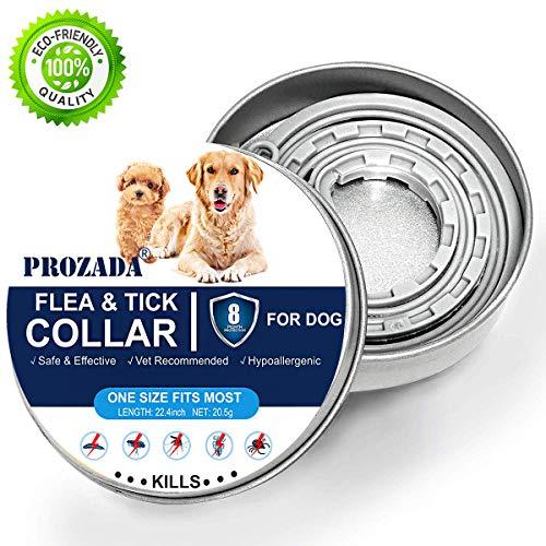 PROZADALAN Collari Antiparassitari per Cani, 8 Mesi di Efficacia Protezione, Ingredienti Naturali, Protezione Efficace per Otto Mesi (63 cm, Grigio) (1)
