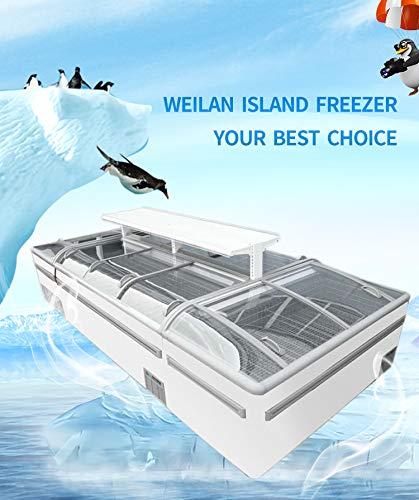 Supermercado de alimentos congelados comercial de tipo abierto gabinete isla combinado frigorífico congelador
