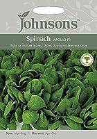 【輸入種子】 Johnsons Seeds Spinach Apollo F1 スピナッチ(ほうれんそう)・アポロ・F1 ジョンソンズシード [並行輸入品]