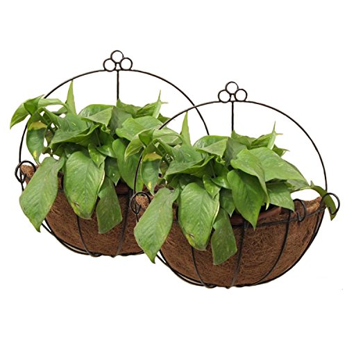 Tosnail 2 Pack Metal Wall Hanging Planter Basket with Coco Liner - Great for Indoor or Outdoor Plants
