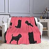 Affenpinscher Dog Lightweight Ultra-Soft Micro Flannel Throw Fleece Blanket for Sofa Bed Home Decor 80'x60'