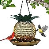 Best Bird Feeders - Vintage Pineapple Top Fill Mesh Solar Bird Feeder Review