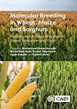 Molecular Breeding in Wheat, Maize and Sorghum: Strategies for Improving Abiotic Stress Tolerance and Yield