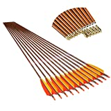 Linkboy Archery Carbon Arrows Hunting Target Arrows with Removable Tip for Compound Recurve Long Bows, Spine 500 32 inch Pack of 12PCS