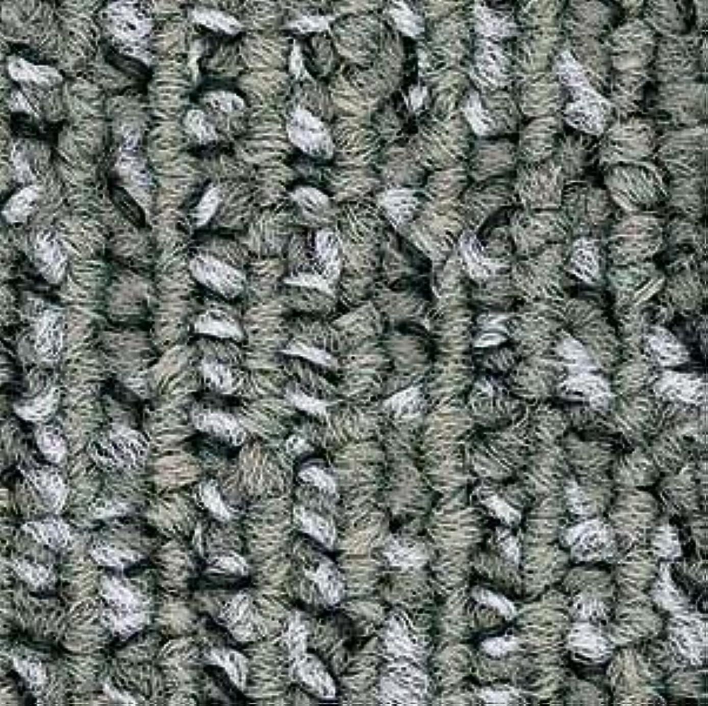 閉塞インキュバス先祖カーペットタイル/タイルカーペット メタルソリッド サンゲツ NT-760P シリーズ 50cmx50cm 50cm角 国産品 20枚セット(NT-762P)