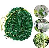 ECHG 3,6 x 1,8 m Reti da giardino Reti in nylon a traliccio per piante Reti per piselli per frutti di fagioli per piante rampicanti