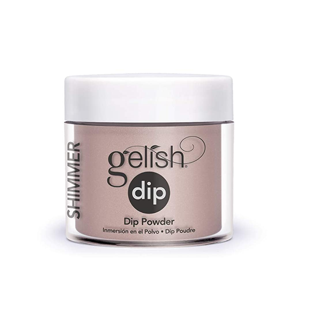 肌寒い運搬で出来ているHarmony Gelish - Acrylic Dip Powder - Perfect Match - 23g / 0.8oz