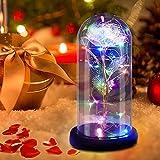 Gohytal Rosa Bella y Bestia, Rosa Eterna, Artificiale Rosa Elegante Encantada Cúpula de Cristal con Base Luz LED Originales Regalo Romántico para Cumpleaños Navidad Día de Aniversario de Bodas