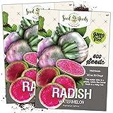 Seed Needs, Watermelon Radish (Raphanus sativus) Twin Pack of 500...