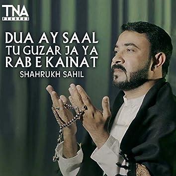 Dua Ay Saal Tu Guzar Ja Ya Rab E Kainat - Single
