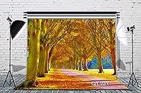HiYash 9x6ft 黄金の秋の風景ビニール素材子供の誕生日パーティー写真スタジオ家族の装飾写真背景カスタマイズされたスタジオ背景写真背景スタジオ小道具