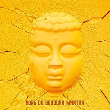Sons du Bouddha Mantra: Détente totale et bien-être