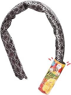 VANVENE Potato Chip Snake Can-Gag Gift Prank Joke Shocking Toys for Men Kids Adult April Fools' Day and Halloween Party Decoration