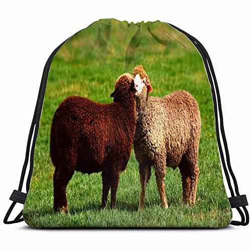 Zwarte witte schapen knuffelen samen liefde dieren wild leven landbouw natuur rugzak met trekkoord gymtas lichte gymtas waterdicht voor vrouwen en mannen voor sport reizen wandelen camping 14 x 17 inch