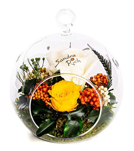 Rosen-Te-Amo Qualitätsvolle Gesteck aus 2 haltbare ewige Rosen in hängende Vase; PREMIUM Blumen-Geschenk & Deko mit Liebe handgefertigte - 3 Jahre haltbar ohne Wasser