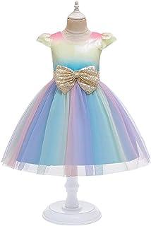 BCSHF Vestido de Princesa de Las niñas Vestido del Funcionamiento del Vestido de la Falda Neta del niño Vestido de la Prin...