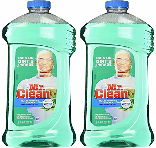 Our #4 Pick is the Mr. Clean Multi-Surface Cleaner