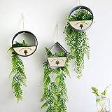Juego De 3 Piezas Colgantes De Pared Maceteros Para Interiores Mini Pared Decorativa Planta De Hierro Soporte De ExhibicióN De Flores