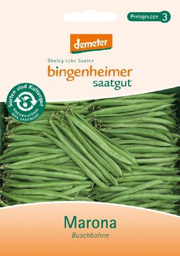 Bingenheimer Saatgut - Buschbohne Marona - Gemüse Saatgut / Samen