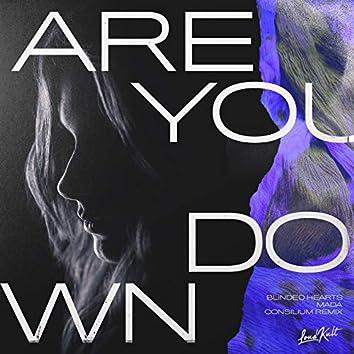 Are You Down (Consilium Remix)