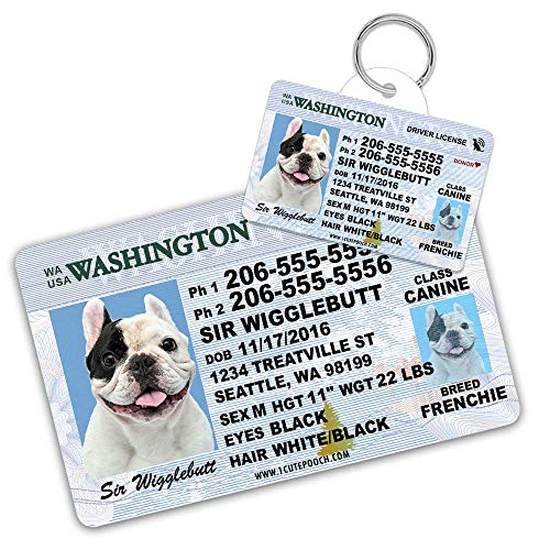 Washington Driver License Custom Dog Tag for Pets and Wallet Card - Personalized Pet ID Tags - Dog Tags for Dogs - Dog ID Tag - Personalized Dog ID Tags - Cat ID Tags - Pet ID Tags for Cats