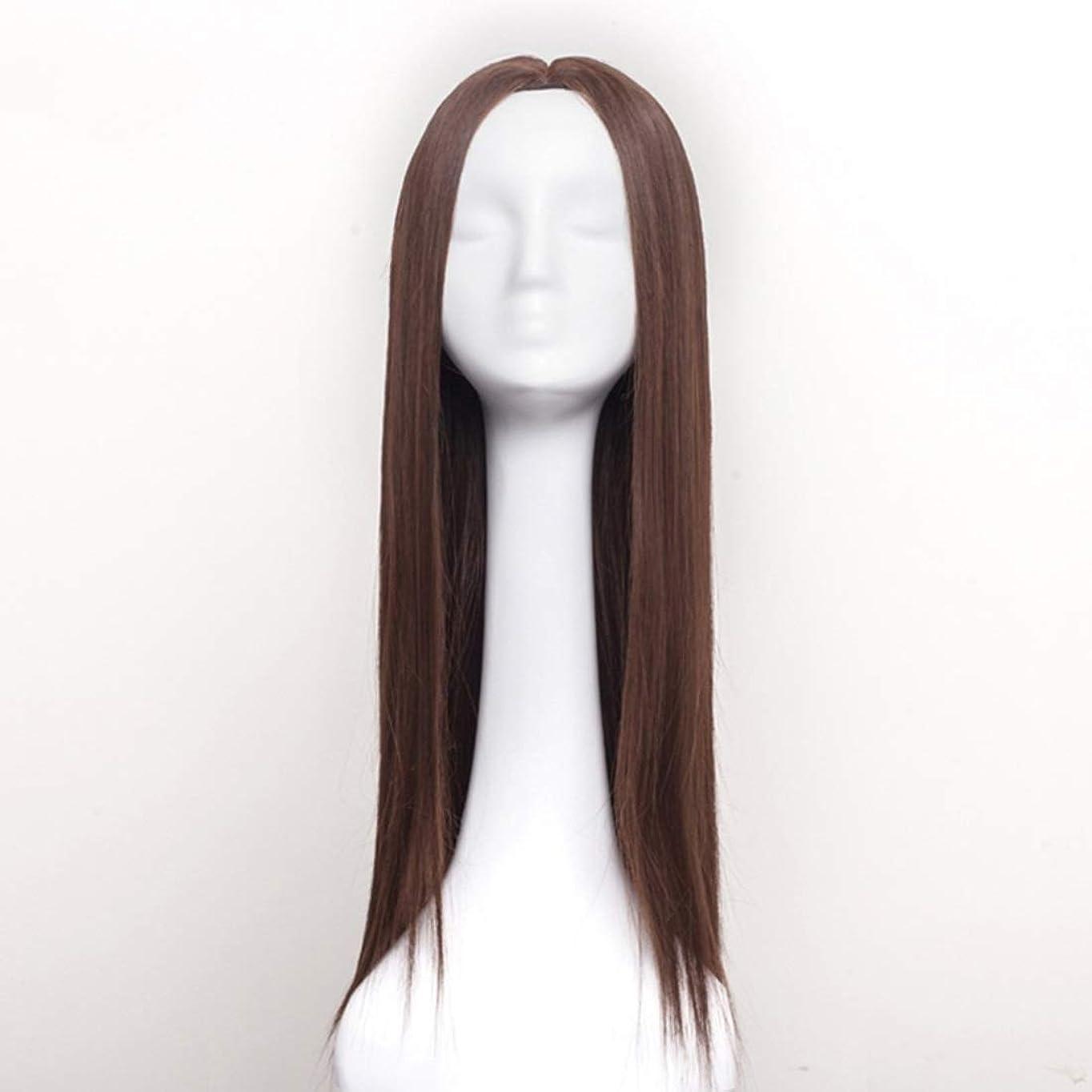 愛情司教背の高いSummerys レディースウィッグロングストレートヘアウィッグ合成耐熱女性ヘアスタイルカスタムコスプレパーティーウィッグ