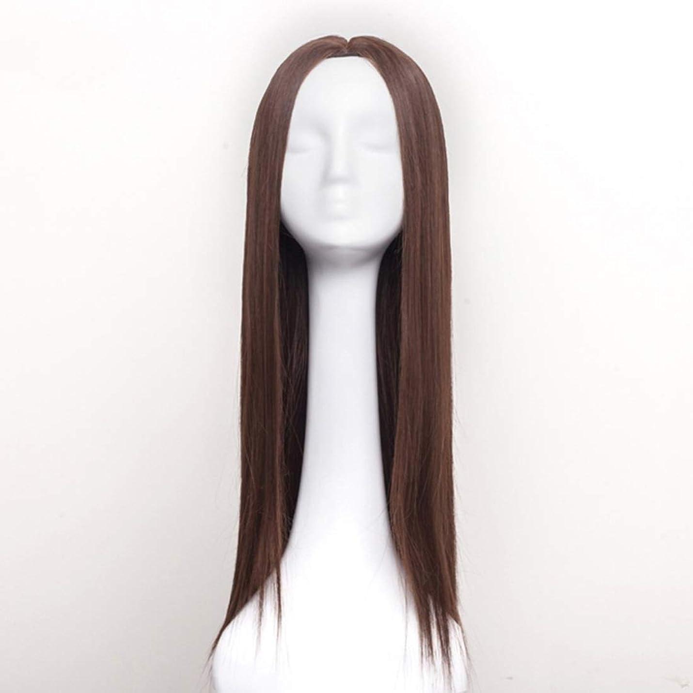 ビートお互い形式Kerwinner レディースウィッグロングストレートヘアウィッグ合成耐熱女性ヘアスタイルカスタムコスプレパーティーウィッグ