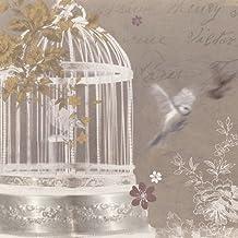 Arthouse Silver Birdcage Canvas