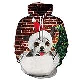 Fansu Noël Sweats à Capuche Animaux Imprimé 3D Hoodie, Unisexe Manches Longues Manteau de Sport Casual Tops Pullover Automne Hiver Sweat-Shirts Vêtements S-5XL (4XL,Chien)