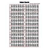 Suika Suika オリジナルクリアファイル ピアノコードファイル ポスター ギターコード表 2サイズ