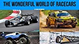 The wonderful world of race cars (English Edition)
