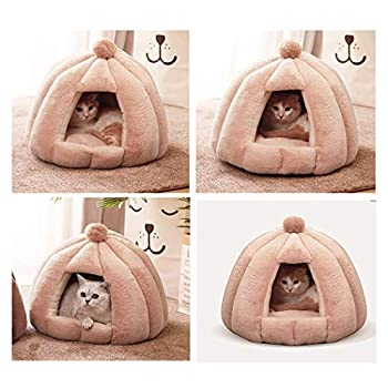 Abri Douillet Chat 2 en 1 avec Dômes Niche pour Chat Chien avec Coussin Amovible Grotte Tente Maison Pliable pour Animaux de Compagnie (Beige)
