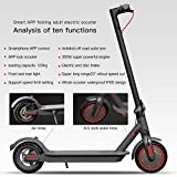 Electric Scooter, 350W Motor, Lightweight and Foldable Scooter for Adults, Color LCD Display, Bluetooth, APP Contorl, Black